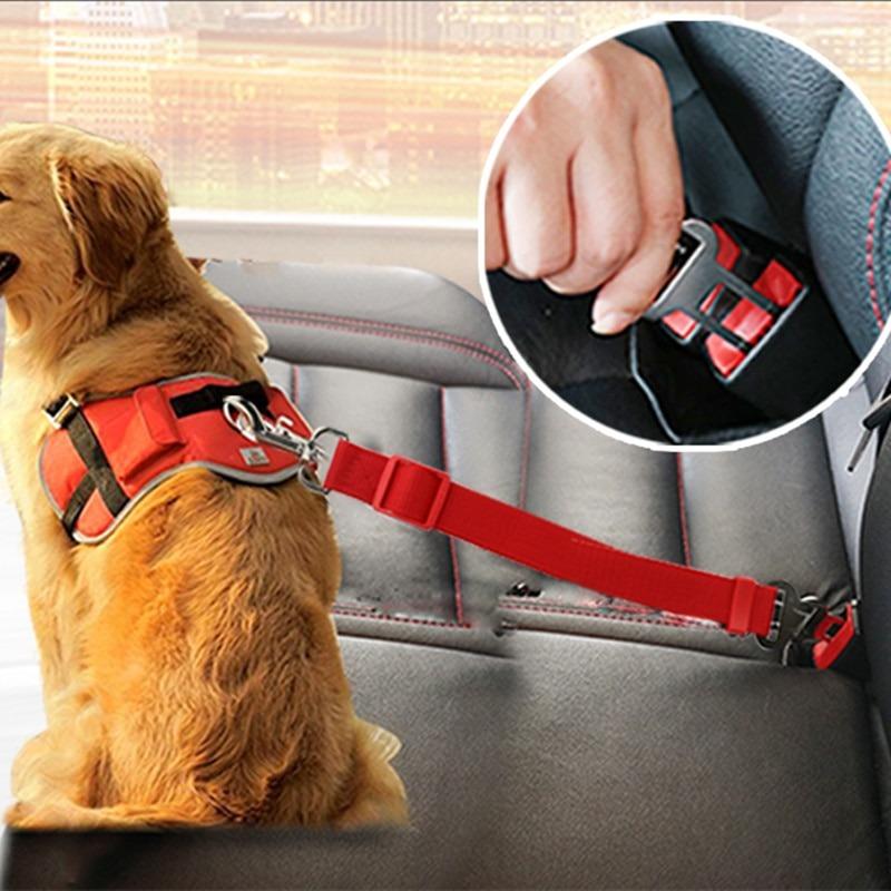Cinturón Seguridad Coche para mascotas